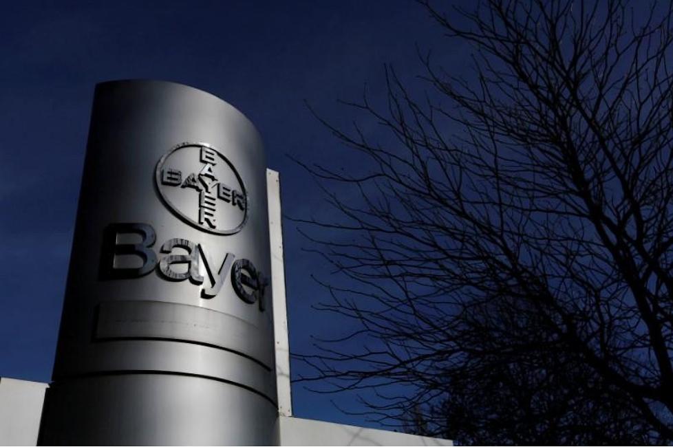 Bayer to sell vegetable seeds business - Tomato News